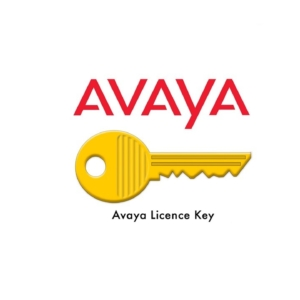 Avaya Licenses